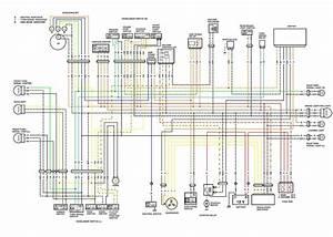 E7bbf 91 Harley Softail Wiring Schematic