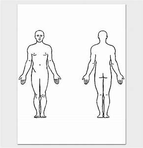 List of Synonyms and Antonyms of the Word: human back outline