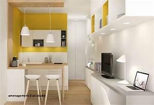Amenager Studio 15m2 : amenagement d un studio meubles sur mesure unique ~ Melissatoandfro.com Idées de Décoration