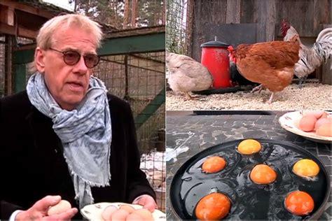 Ar ko atšķiras dažādi turētu vistu dētās olas? Ciemojamies pie Mārtiņa Rītiņa un viņa vistām | LA.LV
