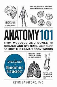 Anatomy 101  From Muscles And Bones To Organs And Systems
