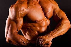 How To Build Muscle Mass Fast  Simple Workouts For Rapid Results