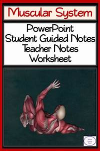 Muscular System  Powerpoint  Student Guided Notes