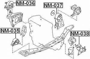 Front Engine Mount For Nissan Serena C24  1999