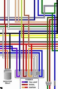 Ccm 644 Dual Sport Colour Motorcycle Wiring Loom Diagram
