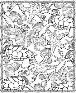 sea animals coloring pages to print - seashells coloring pages az coloring pages