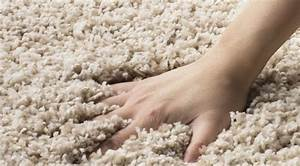 The Pros And Cons Of Frieze    Twist Carpets  And Shag