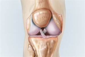 Comprehensive Acl Injury Guide  Why Mobilizing Your Ankles