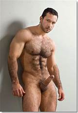 Hot hairy male models