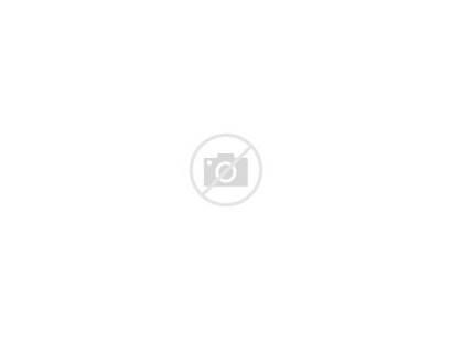 Beach Scantily Clad Sex Daytime Orse