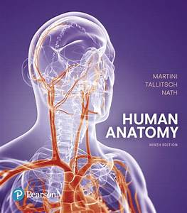 Solution Manual  Complete Download  For Human Anatomy  9th