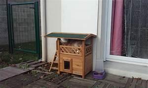 Cabane Pour Chat Exterieur Pas Cher : maisonnette lodge niche maison pour chat wanimo ~ Farleysfitness.com Idées de Décoration