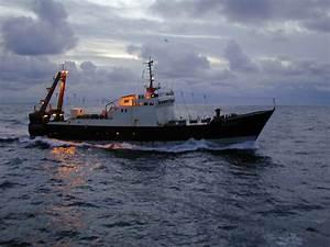 Rencontre Boulogne Sur Mer : euronor seafood markets 13 rue huret lagache boulogne sur mer pas de calais france ~ Maxctalentgroup.com Avis de Voitures