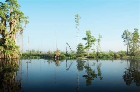 Six of Georgia's natural wonders - Atlanta Magazine