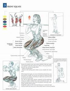 The Front Squat Is A Beast Of A Move  And Is Also Surprising Easier On The Lower Joints Than The