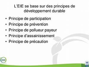 Principe De Précaution Charte De L Environnement 2 2 De L évaluation Environnementale Vers La