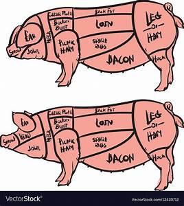 Cuts Of Pork Chart Pdf