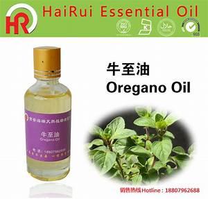 Feed Grade Oregano Oil With 70  80   U0026 87  Carvacrol  U0026 Thymol