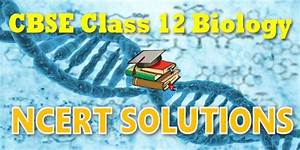 Ncert Solutions For Cbse Class 12 Biology