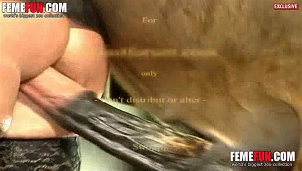 #Horse #Fucks #Woman #Hard #And #Cums #In #Her #Vagina #When #The #End