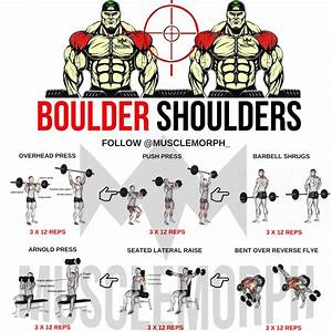 Boulder Shoulders Deltoid Workout Delts Shoulder Exercise Gym Bodybuilding Fitness Musclemor