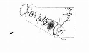 Wiring Diagram Honda Trx 70
