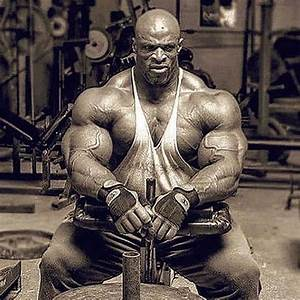 Stars Of Bodybuilding   Stars Of Bodybuilding Official   U2022 Instagram Photos And Videos