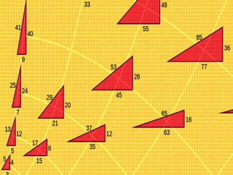 3 graduate 4 look 5 take 6 enrol 7 drop 8 meet. Tenth grade Lesson Special Right Triangles | BetterLesson
