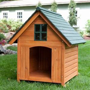What you get when buying a cheap dog house mybktouchcom for Inexpensive dog houses