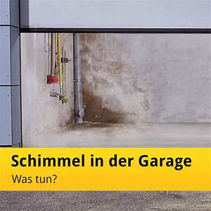 Was Tun Gegen Maden In Der Küche : feuchte garage mit schimmel in der garage was tun news tor7 ~ Markanthonyermac.com Haus und Dekorationen