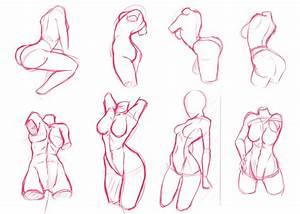 Body Anatomy Drawing Free Download Best Body Anatomy