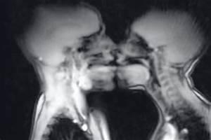 Pics of couples having explicit sex