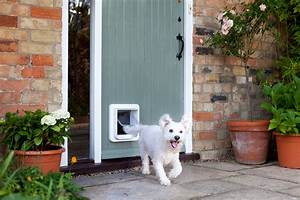 the sureflap microchip pet door for large cats small dogs With dog and cat doors