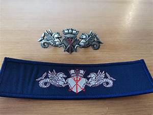 New Royal Navy Pwo Badge  To Be Worn From 1 June  Silver For Pwo  Gold For Command    Royalnavy