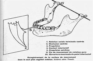 Diagramme De Posselt Pdf