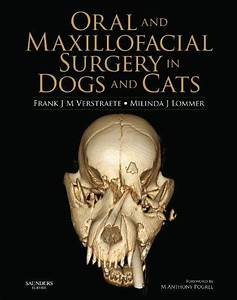Download Pdf  Oral And Maxillofacial Surgery In Dogs And