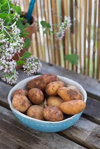Kartoffeln Lagern Wohnung : kartoffel pflanzsack selber machen garten fr ulein der ~ Lizthompson.info Haus und Dekorationen