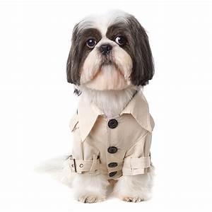 Video Pour Chien : manteau pour chien trench manteau imperm able oh pacha ~ Medecine-chirurgie-esthetiques.com Avis de Voitures