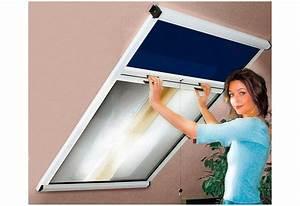 Insektenrollo Für Dachfenster : komplett set insektenschutz und verdunkelungsrollo f r ~ Watch28wear.com Haus und Dekorationen