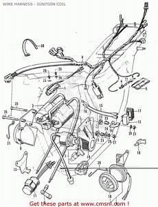 Honda Cb350k4 Italy Wire Harness