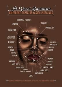U0026 39 Facial Piercings Chart U0026 39  Poster Print By Jarrod Vandenberg