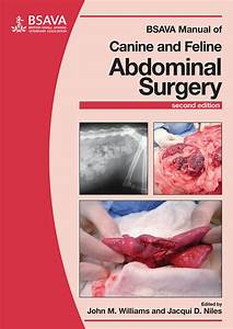 Bsava Publishes New Canine And Feline Abdominal Surgery