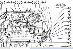 I Have A 2002 Lexus Es300  Usa  Model  It Has Drl U0026 39  U0026 39 S And