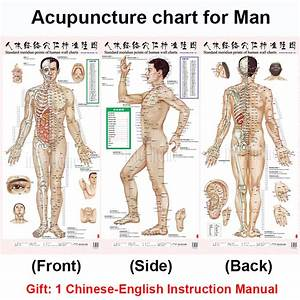 Acupuncture Chart Face