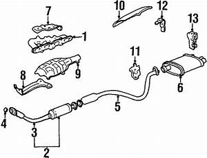 Chevrolet Cavalier Exhaust Pipe To Manifold Gasket  1993 2