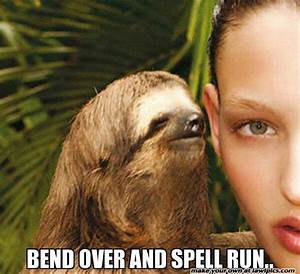 48 Best images about Sloth on Pinterest   Creepy sloth ...