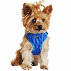 Wrap And Snap Choke Free Dog Harness By Doggi