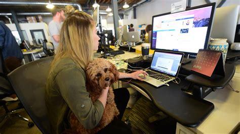 relation sexuelle au bureau c 39 est mon boulot amener chien au bureau quot cela