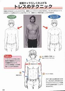 Reference Guide For Drawing Male Muscles  U2013 160 Photos