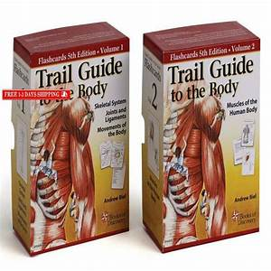 Trail Guide To The Body Flash Card Set